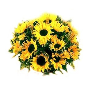 Sunny Devotion Bouquet