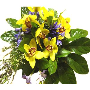Exotic Enchantments Bouquet